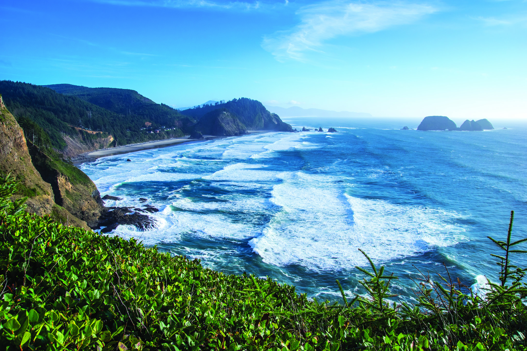 Cape Meares Lighthouse trail photo